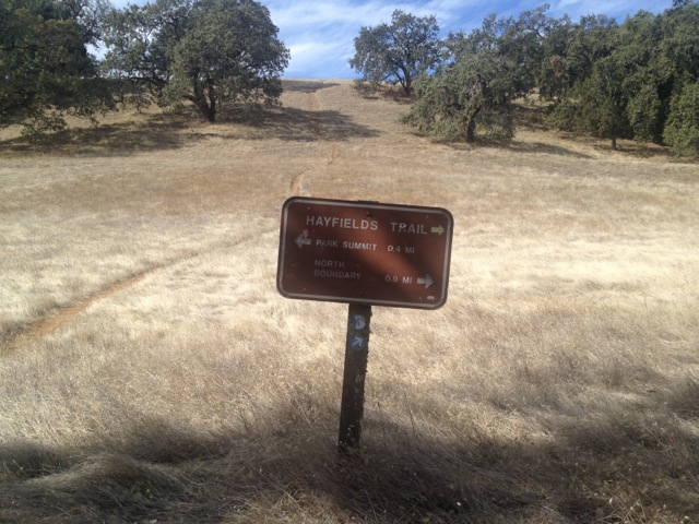 Use trail up to the summit.