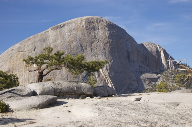 Half Dome from the top of Liberty Cap.