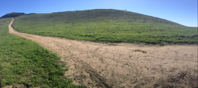 The trail up Mission Peak.  You can faintly make out the hoards of people heading up/down along the ridge.