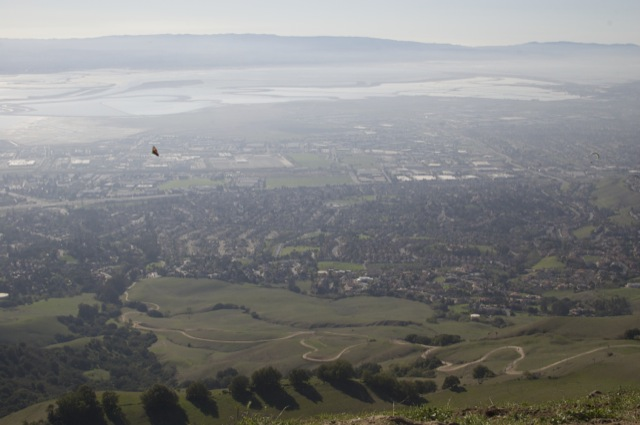 Top of Mission Peak.  You can see the trail, all the way back to the parking lot on Stanford Ave.