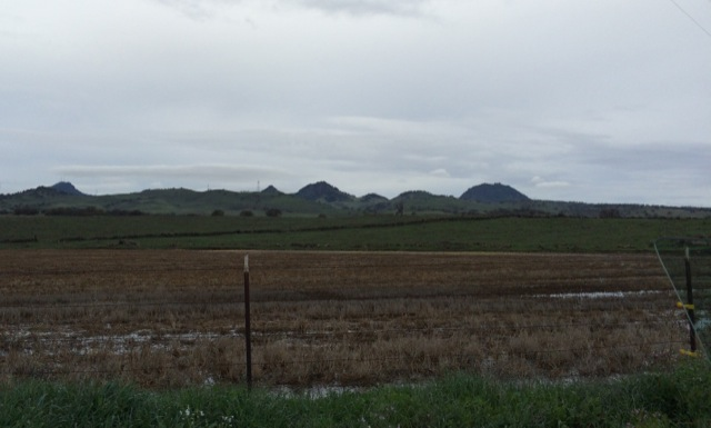 Approaching the Sutter Buttes.
