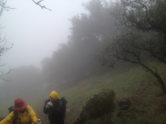 In the cloud, getting close to the summit. Our guide Ken (in the yellow hat).
