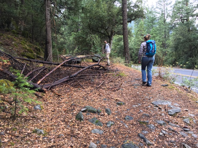 The Old Wawona Road splitting away from the highway.