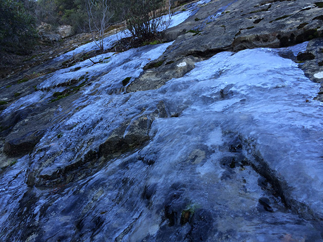 We found a frozen waterfall near the top of Blue Ridge.