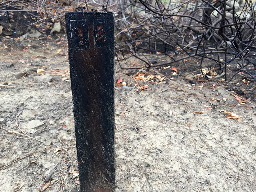 Singed trail marker.